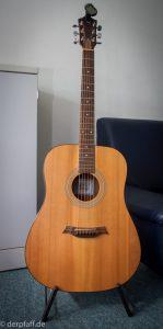 Western Gitarre Baton Rouge R11