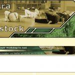 Webseite des Sportvereins